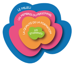 fleur-plan-strategique-web