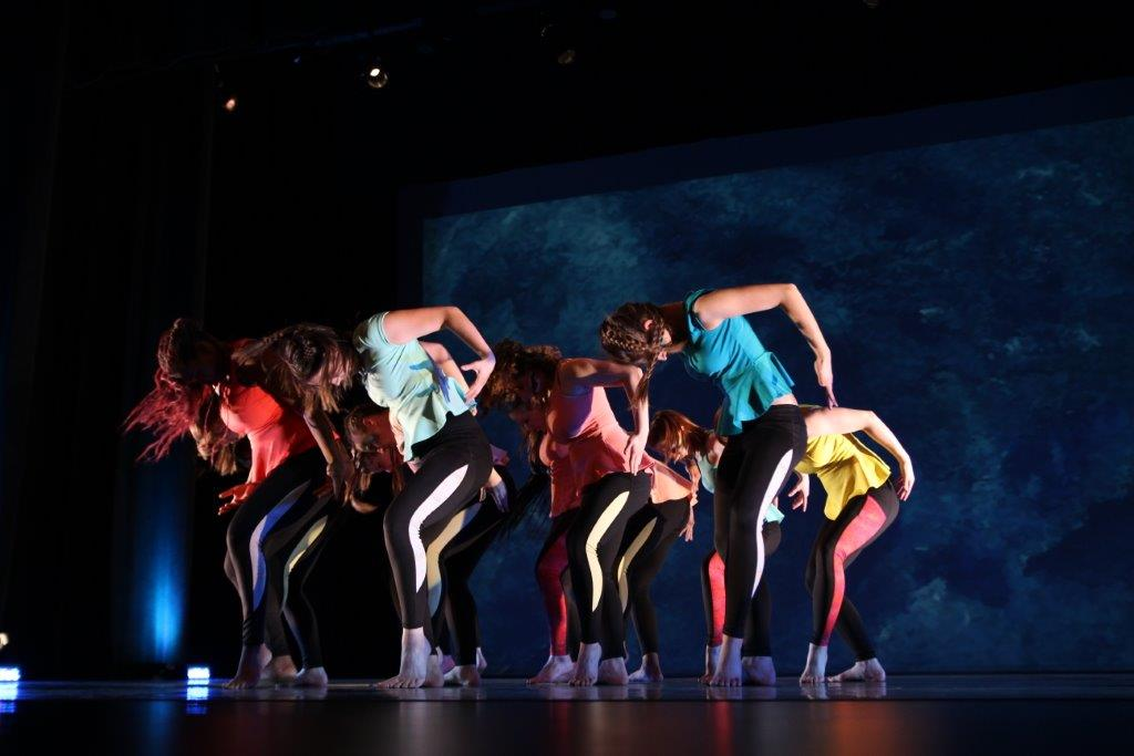 Troupe de danse coll ge montmorency for College montmorency piscine